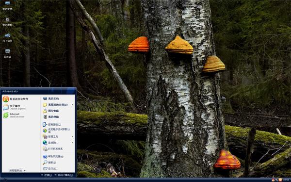 缤纷蘑菇W8主题下载