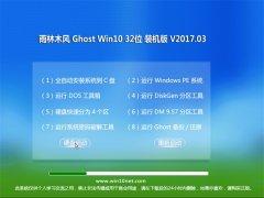 雨林木风Ghost Win10 X32 装机稳定版2017v03(永久激活