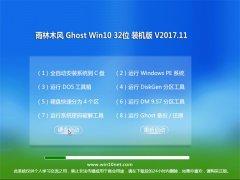 雨林木风Ghost Win10 (X32) 热门装机版2017V11(无需激