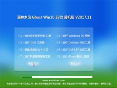 雨林木风Ghost Win10 X32位 终极装机版2017v11(完美激活)